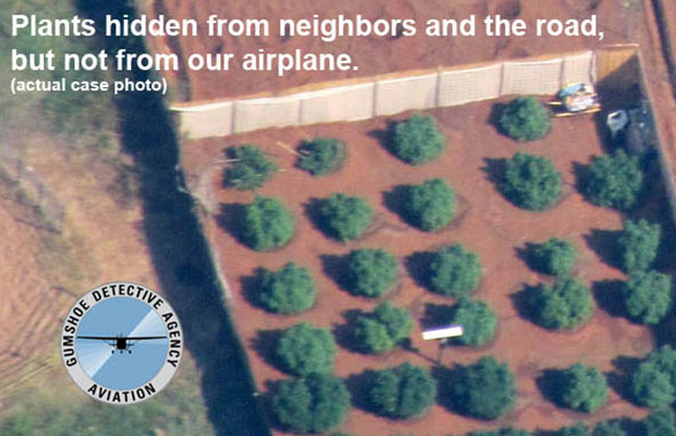 Plants from Air-Ops